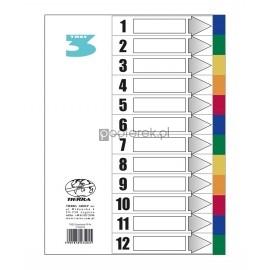 Przekładki A4 laminowane 12 kolorów TRES