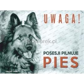 UWAGA! ZŁY PIES PD-03 15x20CM posesji pilnuje pies