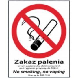 ZAKAZ PALENIA, NO SMOKING LD-90 20*25CM