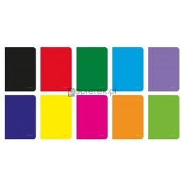 Zeszyt Herlitz A5, 96K, kratka Rainbow HERLITZ