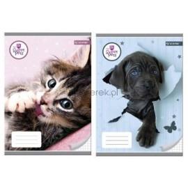 Zeszyt A5 w kratkę 32 kartki Sweet Pets BENIAMIN