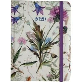 Kalendarz dzienny B6 2020 Chabry ALBI
